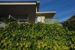 mieszkanie, dom, roślinność